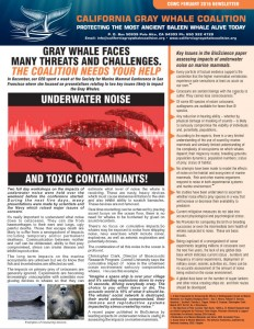 gray whale news feb 2016